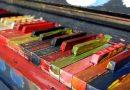 Piyano Türleri | Piyano Çeşitleri